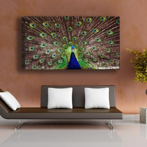 A stunning photo museum quality canvas gallery wrap, Peacock, Canvas print, photography, Green, Blue, Colorful, Home Decor, fine art photo