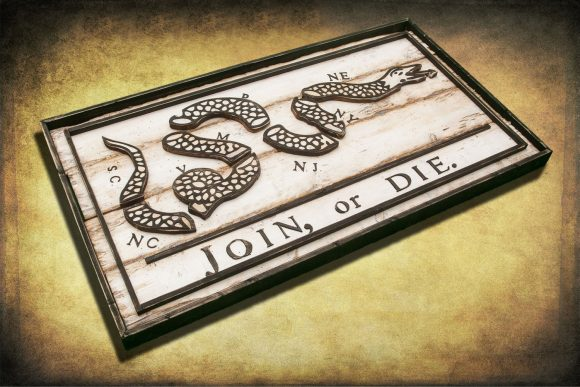 Join or Die Flag, Limited Edition, Weathered Wood One of a kind ,vintage, art, distressed, weathered, recycled, snake, white