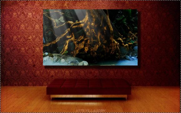A stunning  museum quality canvas gallery wrap, Dream, brown, treen, roots, canvas print, photograph, photography, sepia, abstract, photo